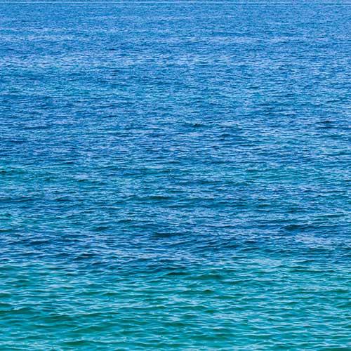 Der blaue Ozean zeigt einen unberührten Markt. [Foto: Handler]