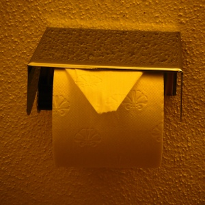 Das Recycling von Hygienepapier ist begrenzt denkbar. (Bild: Handler)